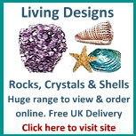 Living Designs rocks and crystals, tropical sea shells