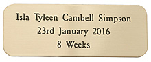 BRASS PLAQUE 50X20mm