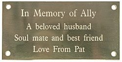 ENGRAVED BRASS PLAQUE 4 x 2 inches 100x50mm