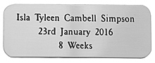 SILVER COLOUR PLAQUE 50X20mm